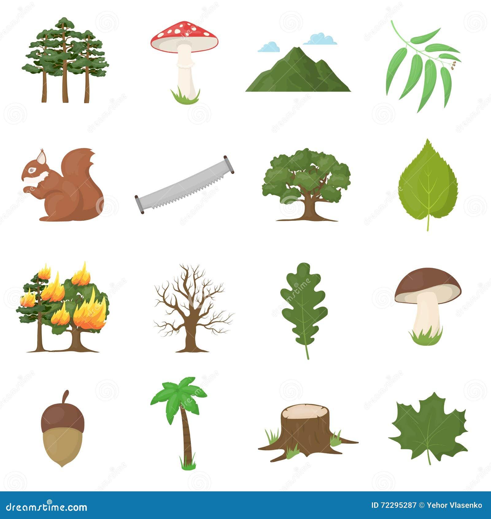 Download Значки вектора леса 16 установили в стиль шаржа Иллюстрация вектора - иллюстрации насчитывающей клен, элемент: 72295287