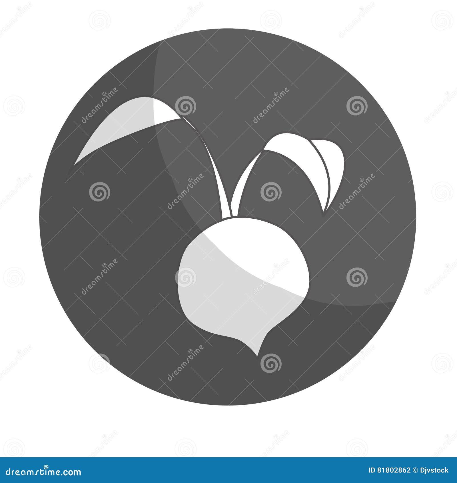 Значок овоща бураков