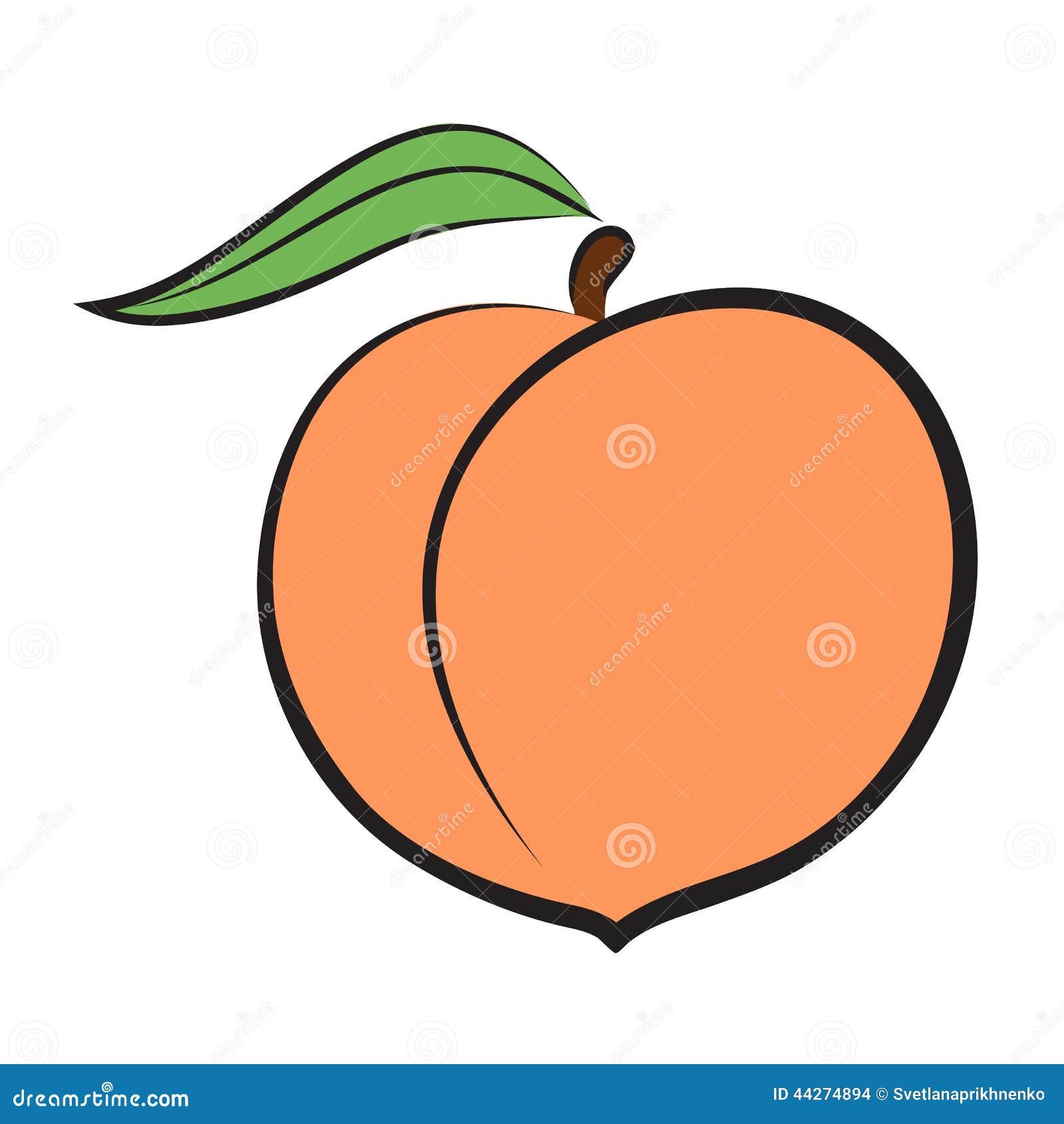 Картинки рисованного персиками
