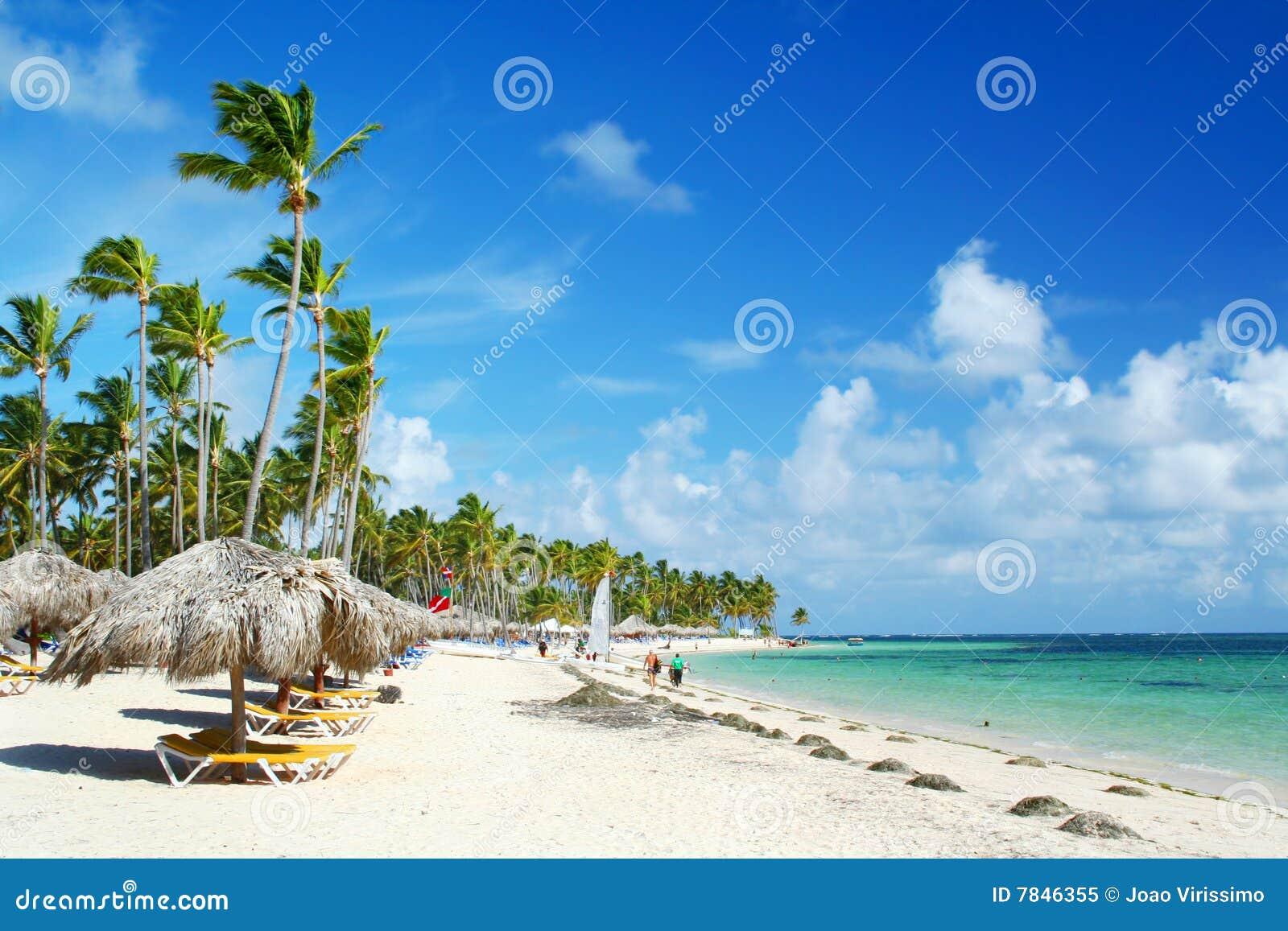 зонтики курорта стулов пляжа карибские