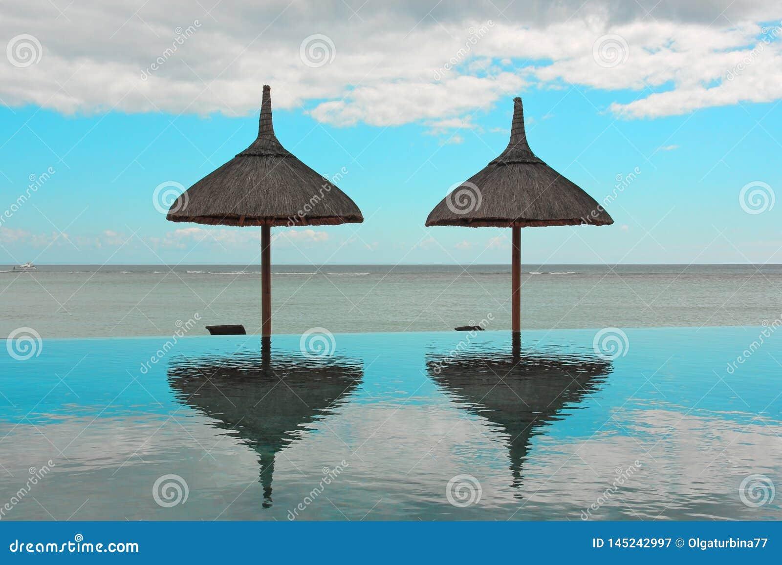 Зонтики пляжа и бассейн безграничности на тропическом курорте обозревая спокойный океан на летний день