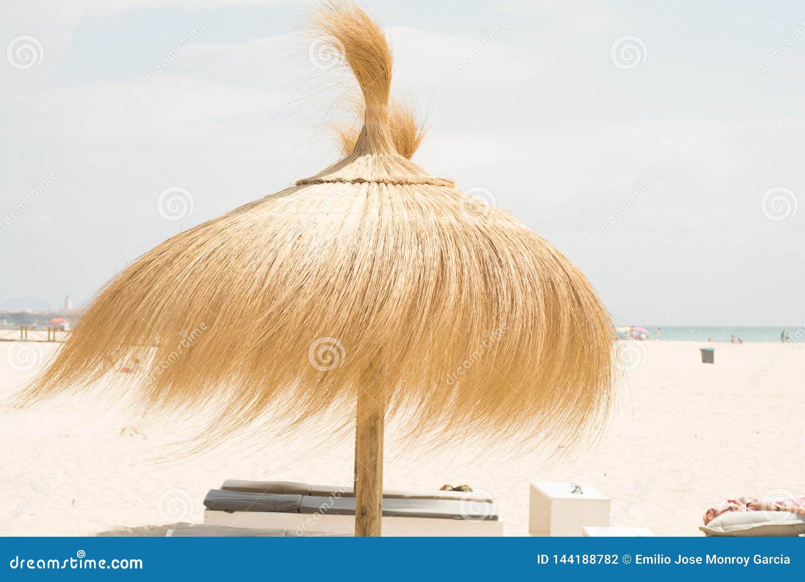 Зонтик для тени на пляже в ветреном дне