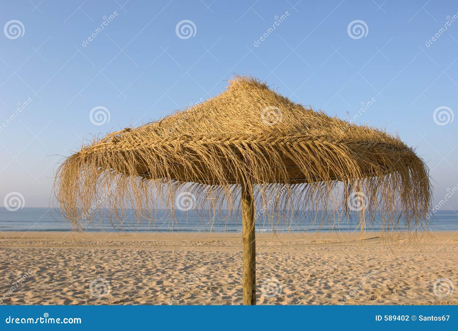 зонтик пляжа тропический