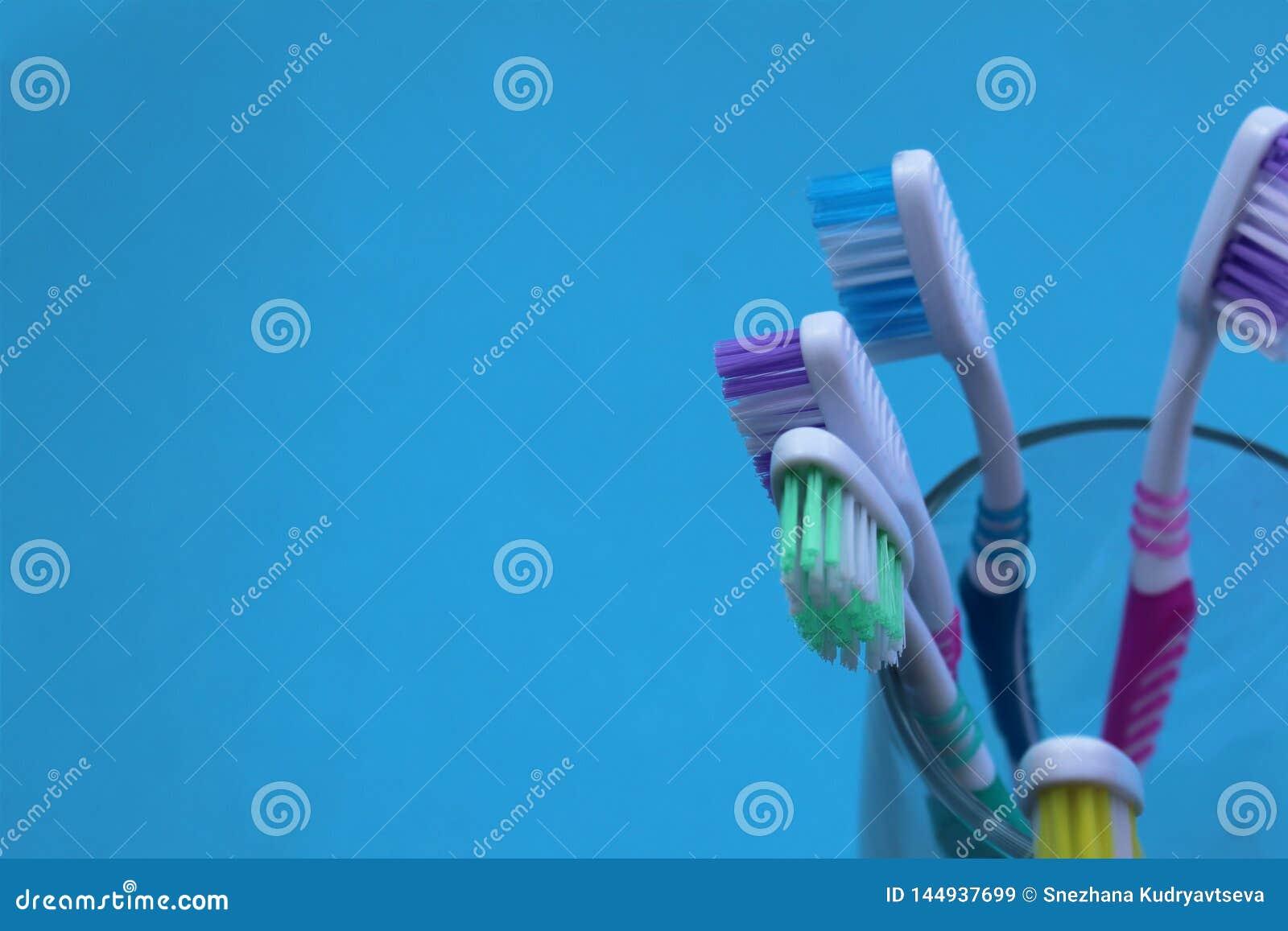 5 зубных щеток стоят в стеклянном beaker на голубой предпосылке