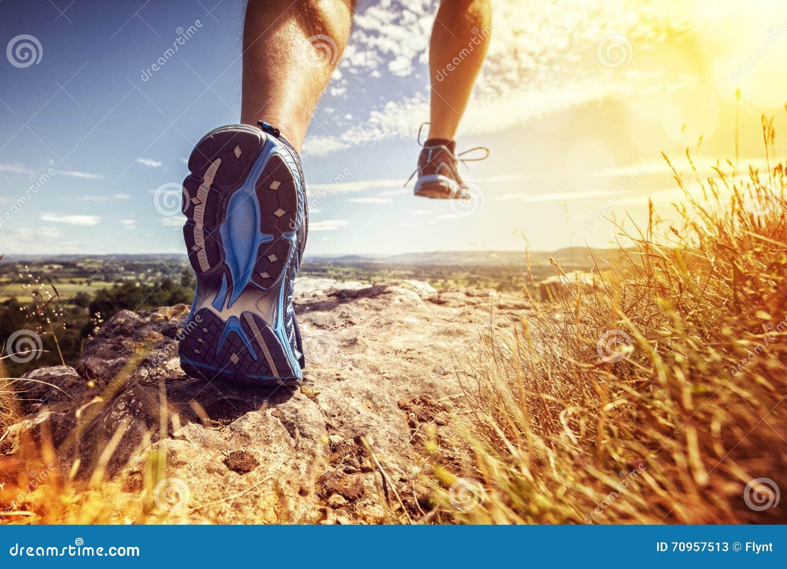 Здоровый ход тропки