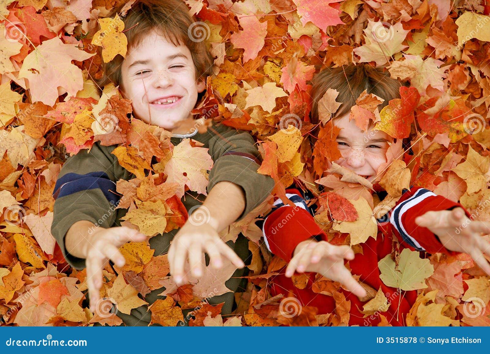 играть листьев мальчиков