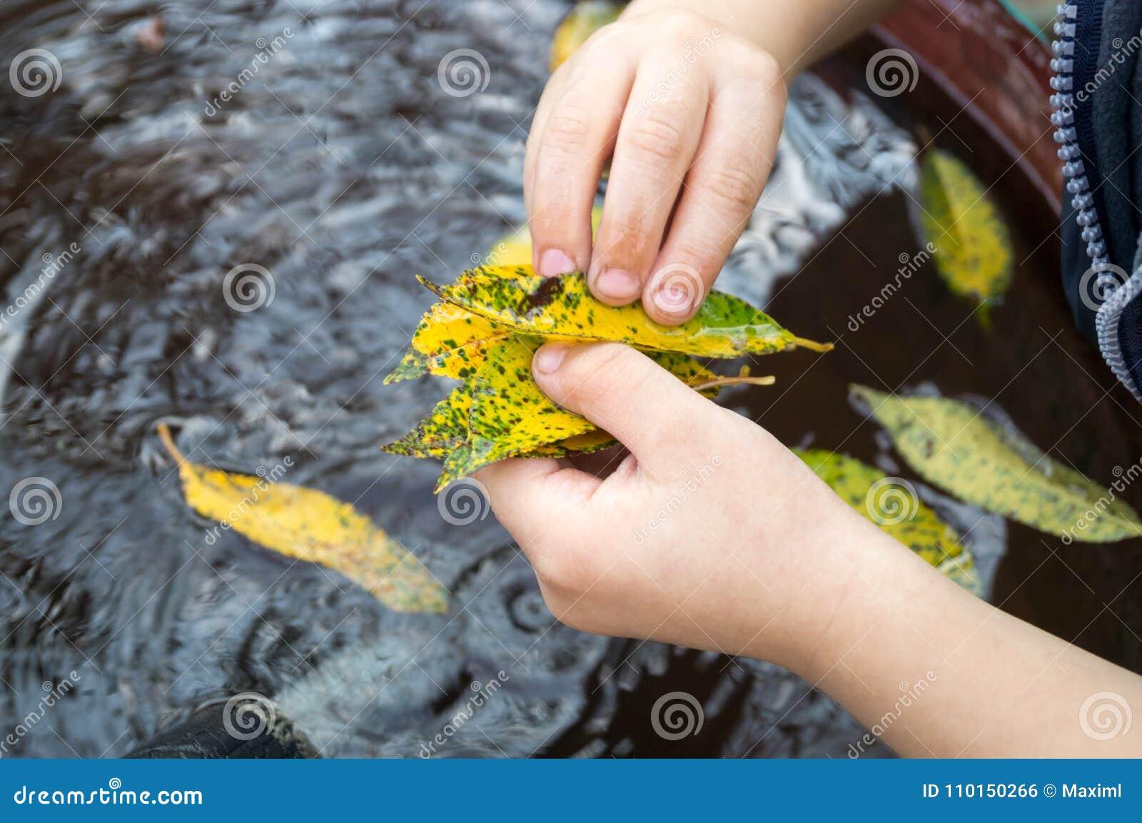 Игры мальчика с листьями