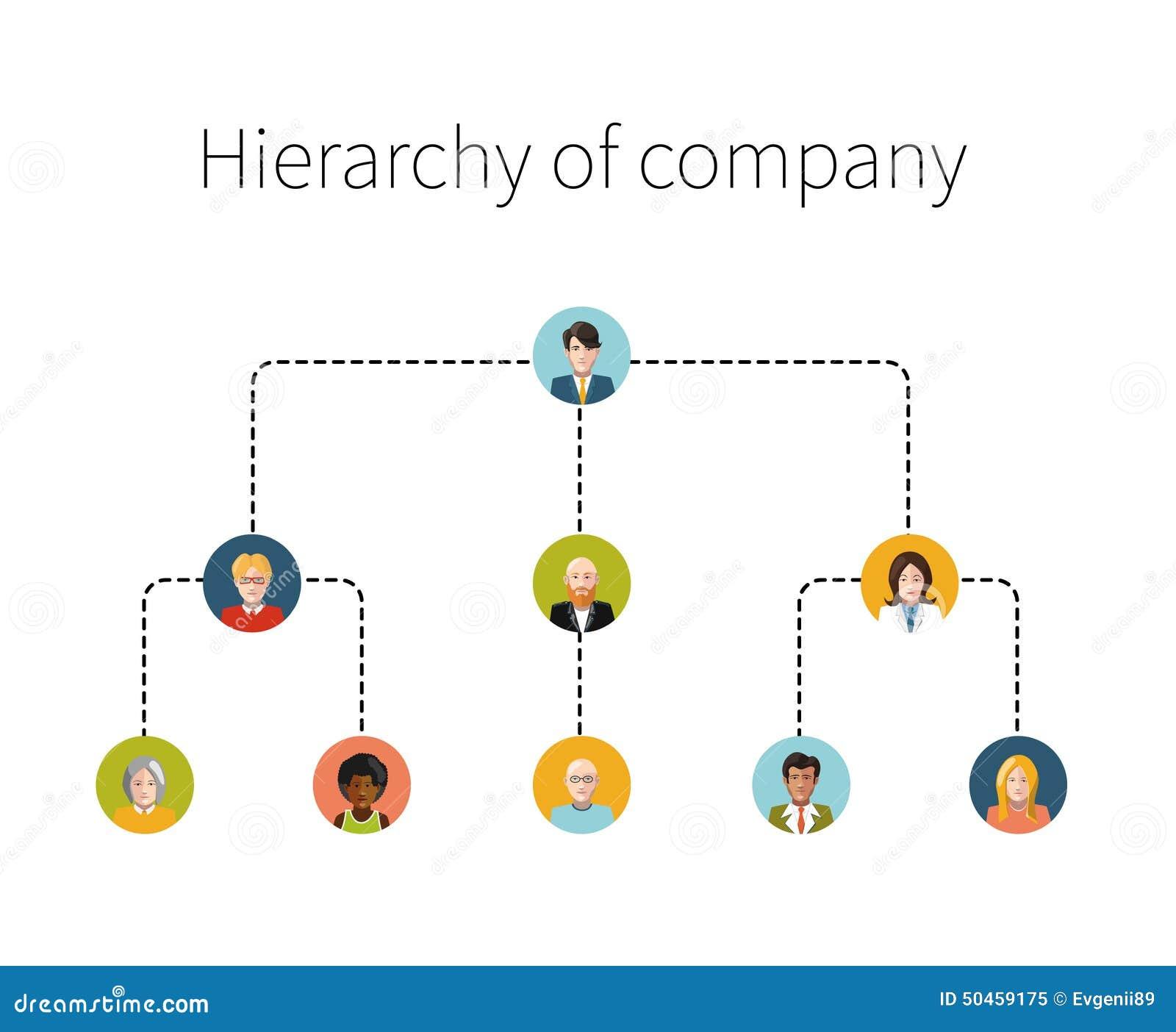 Иерархия изолированной иллюстрации компании плоской