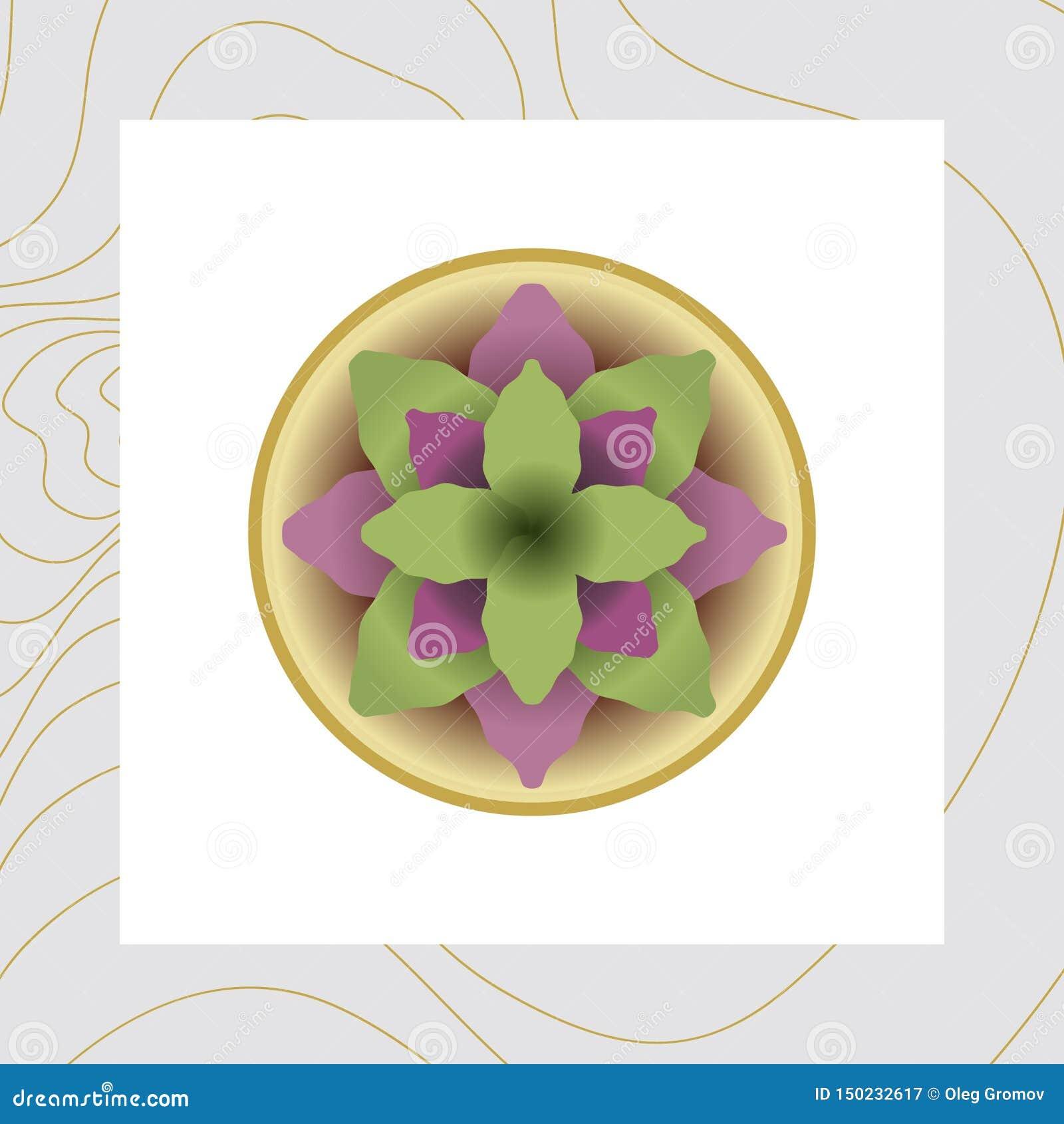 Изображение вектора цветков и заводов в баках, ikebana