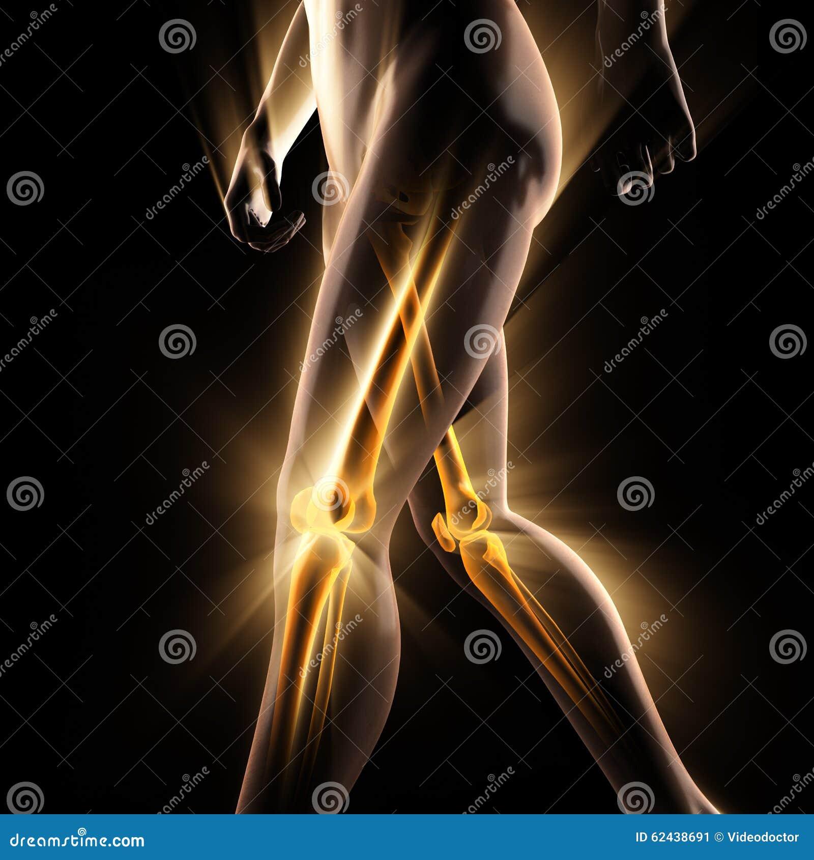 Изображение развертки рентгенографирования косточек человека