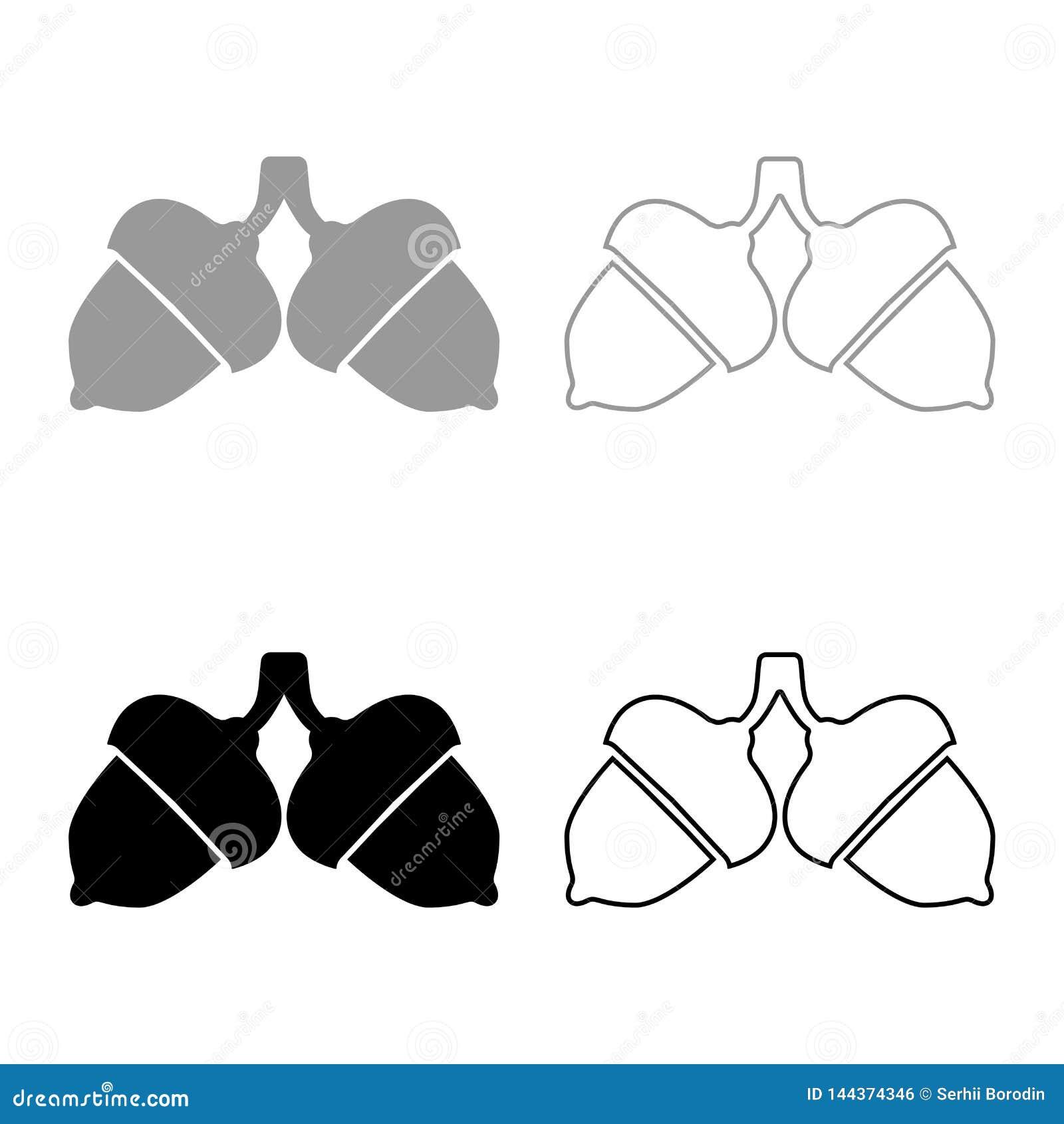 Изображение стиля иллюстрации вектора цвета черноты набора значка 2 жолудей плоское