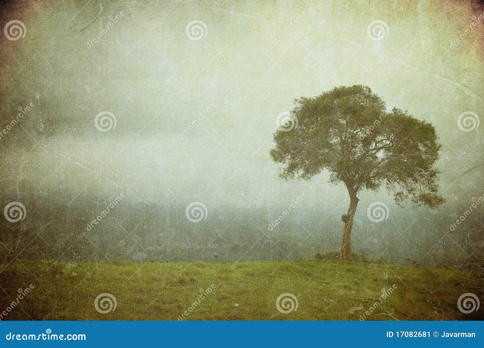Изображение Grunge вала на бумаге сбора винограда