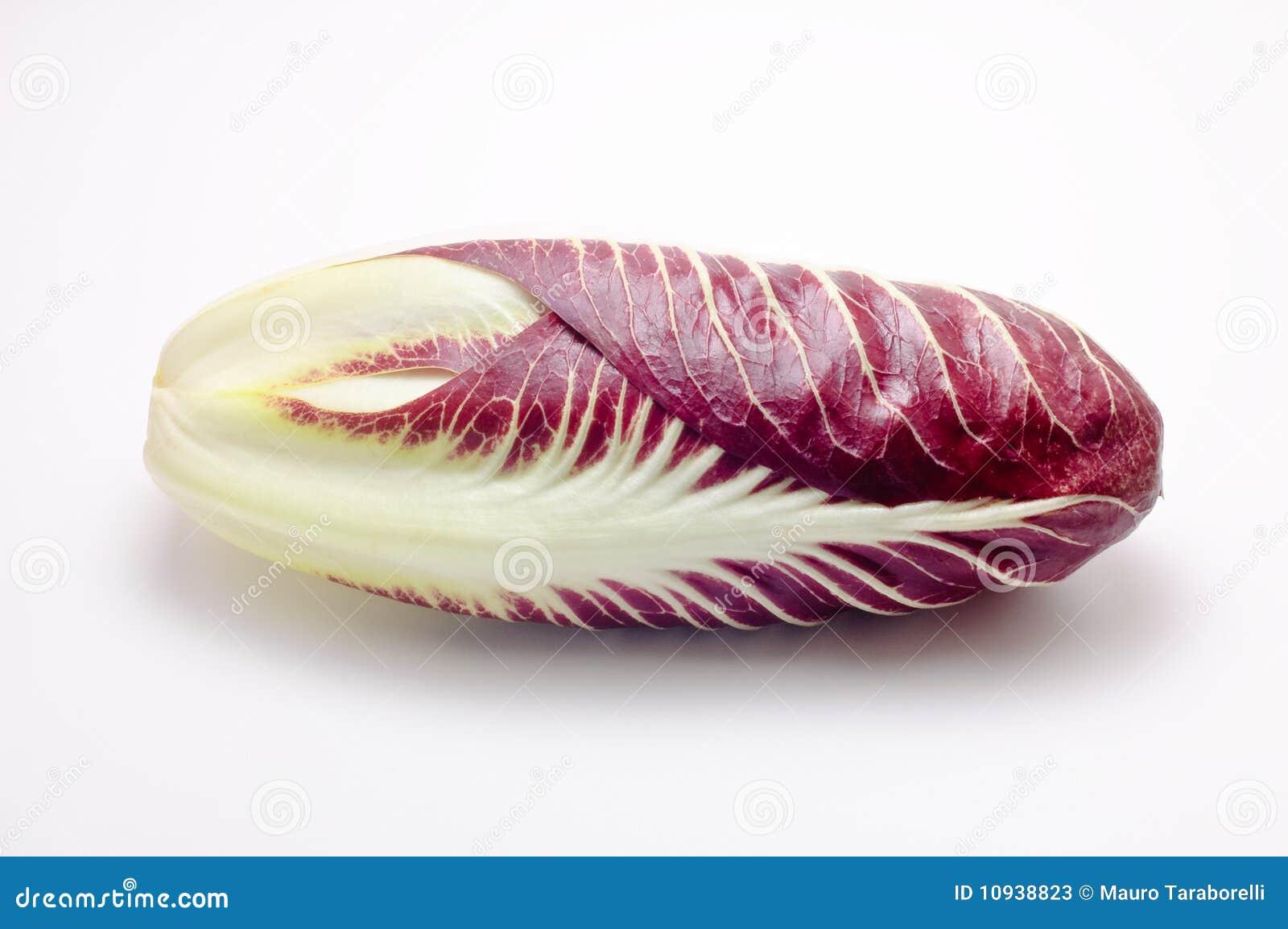 изолированная белизна radicchio