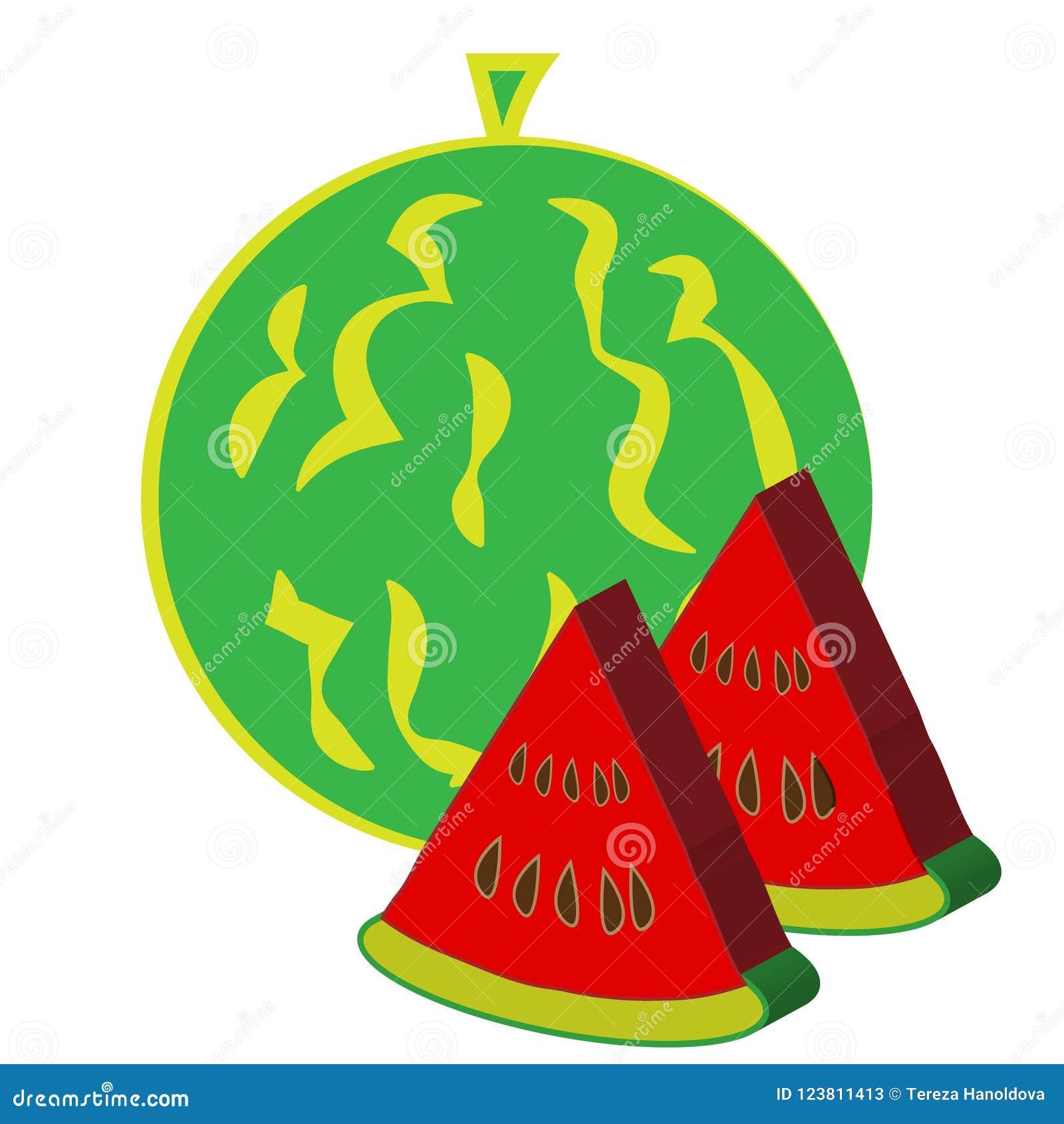 изолированная предпосылкой белизна арбуза