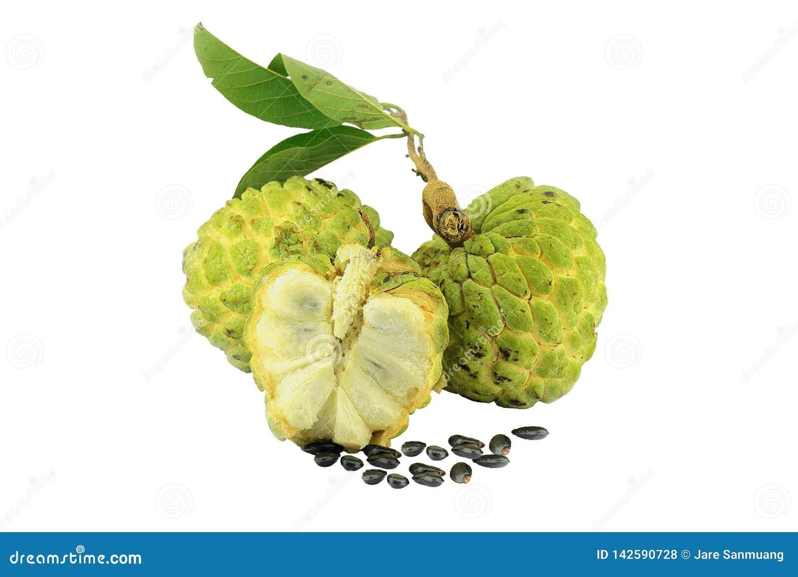 Изолят плода яблока заварного крема на белой предпосылке