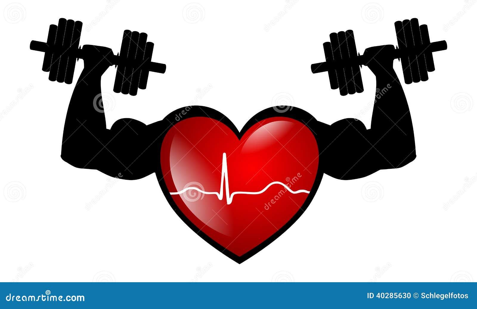 Изолированная электрокардиограмма сердца