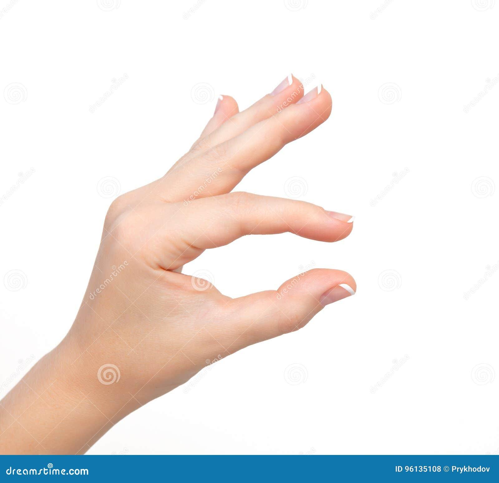 Изолированные выставки руки женщины сжимают для того чтобы просигналить или держащ объект