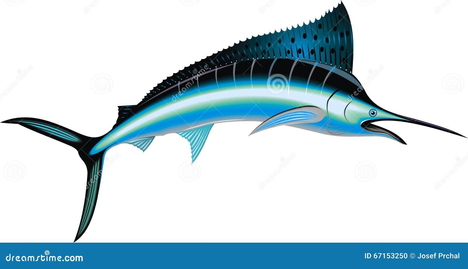 Изолированные рыбы Марлина
