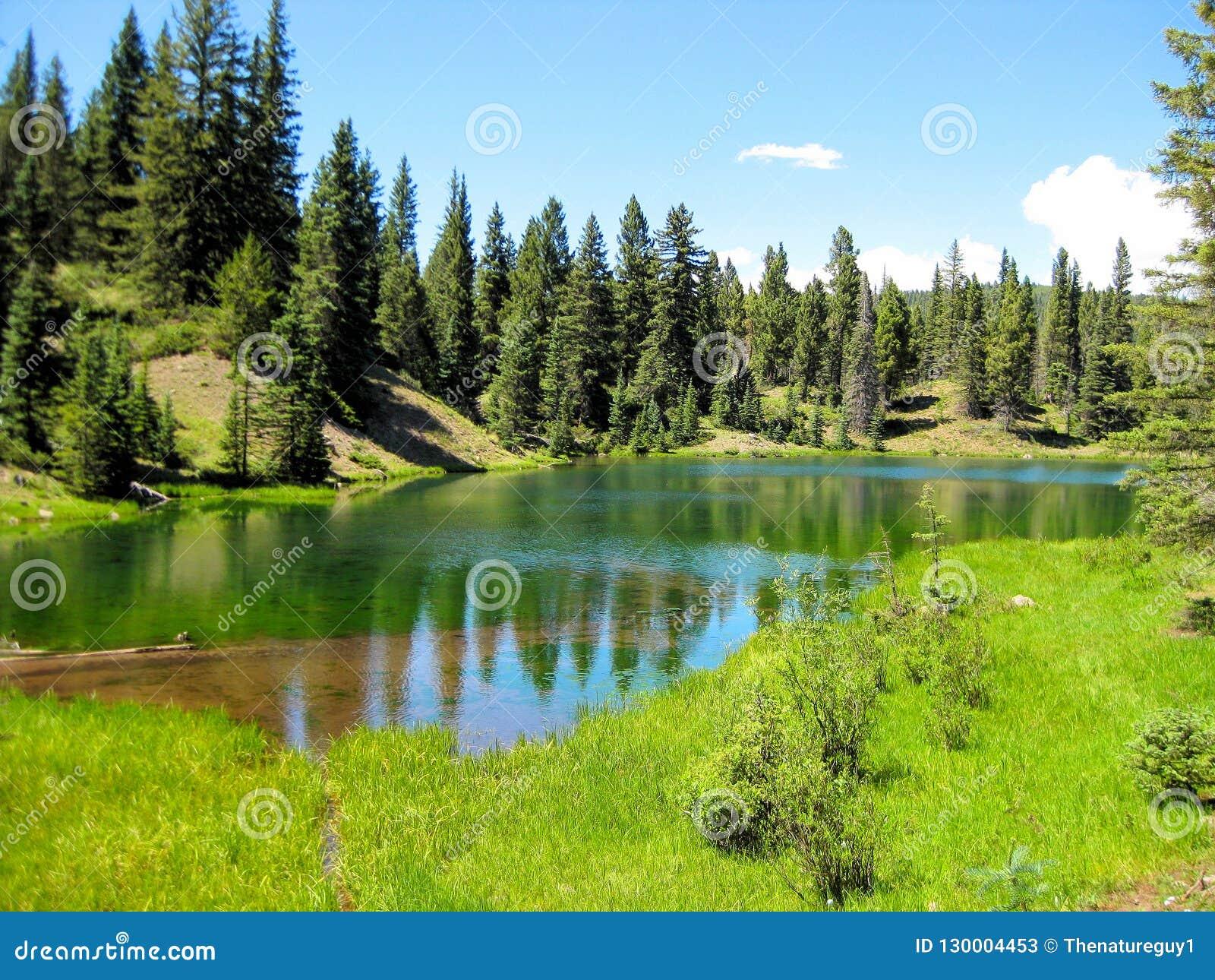 Изумрудно-зеленое озеро высокая гор