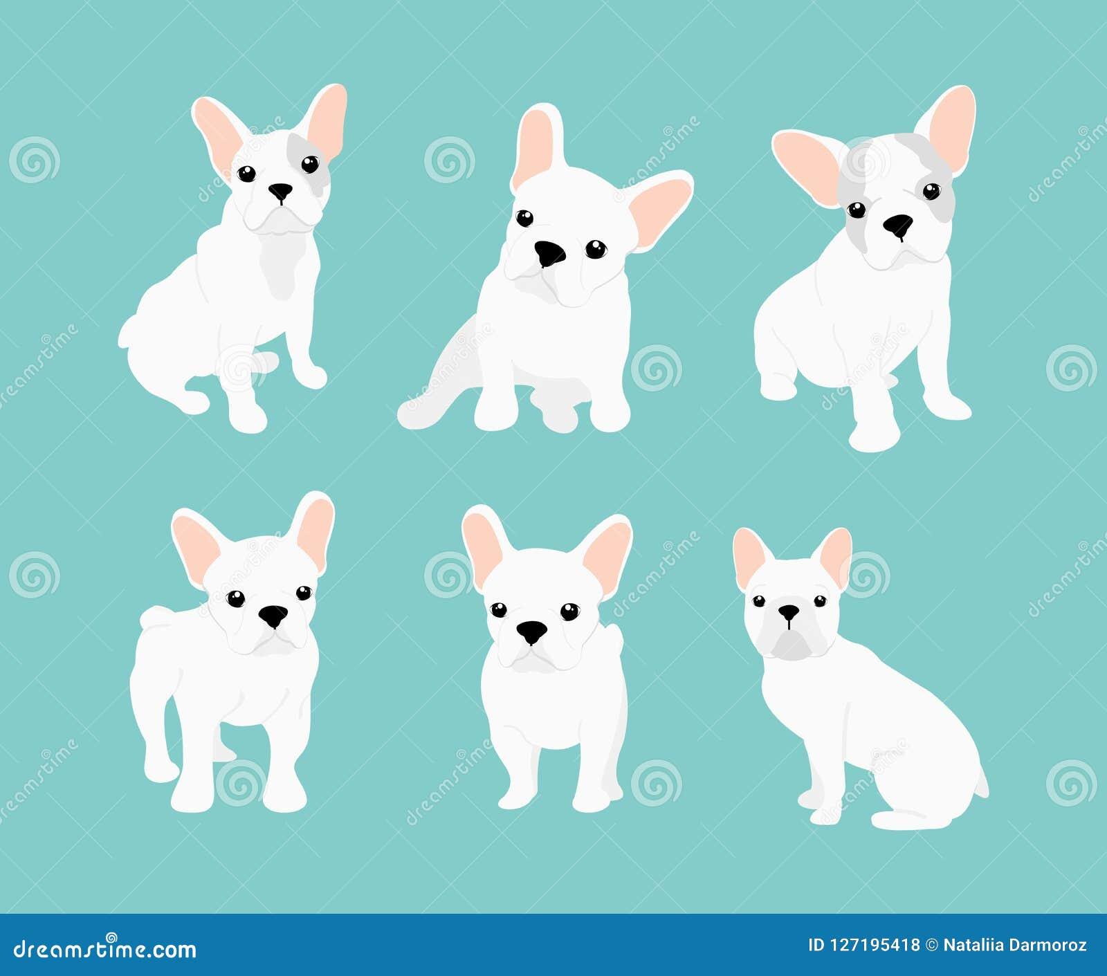 Иллюстрации вектора установили милого маленького белого французского бульдога Счастливые и смешные изображения щенка бульдога в р