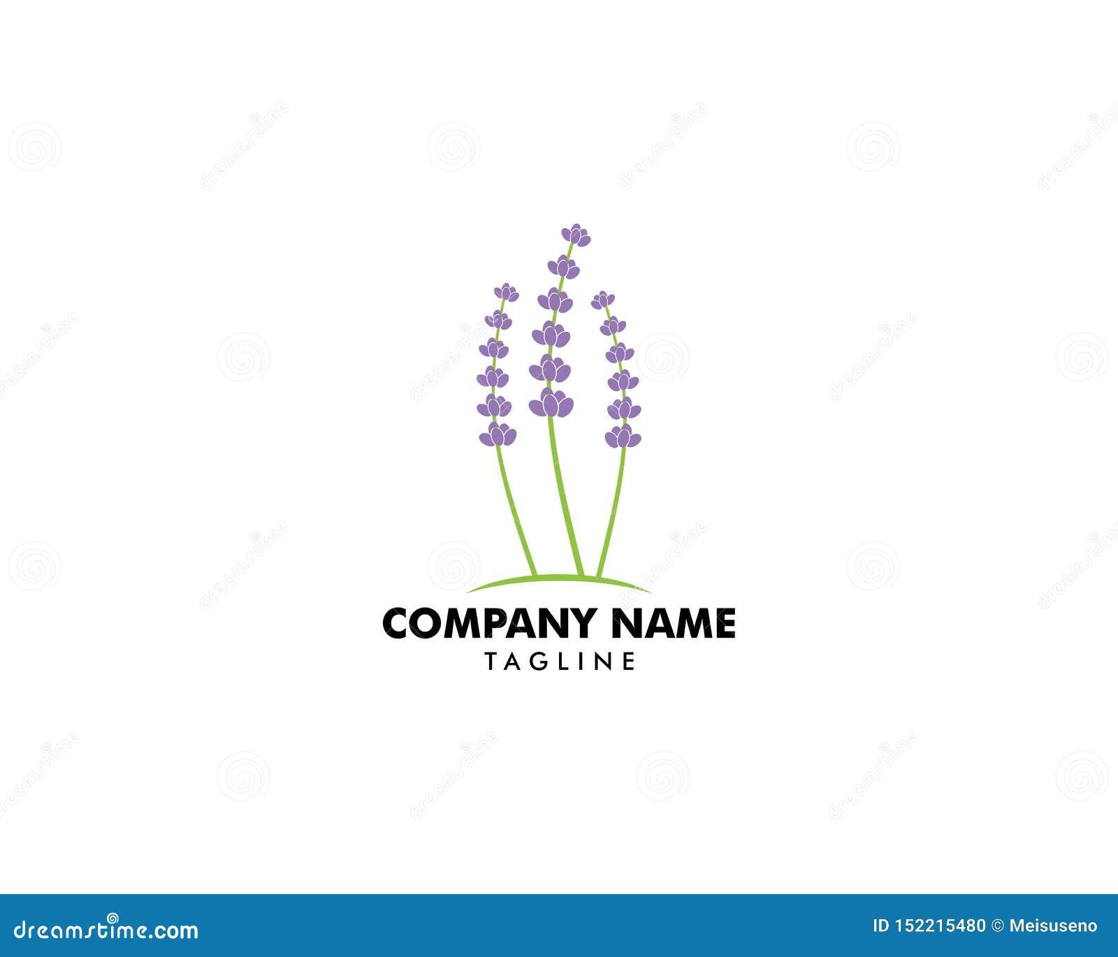 Иллюстрация вектора дизайна логотипа шаблона лаванды