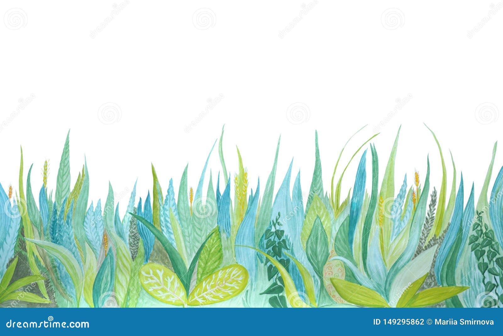 Иллюстрация вычерченной акварели руки ботаническая Голубая и зеленая трава