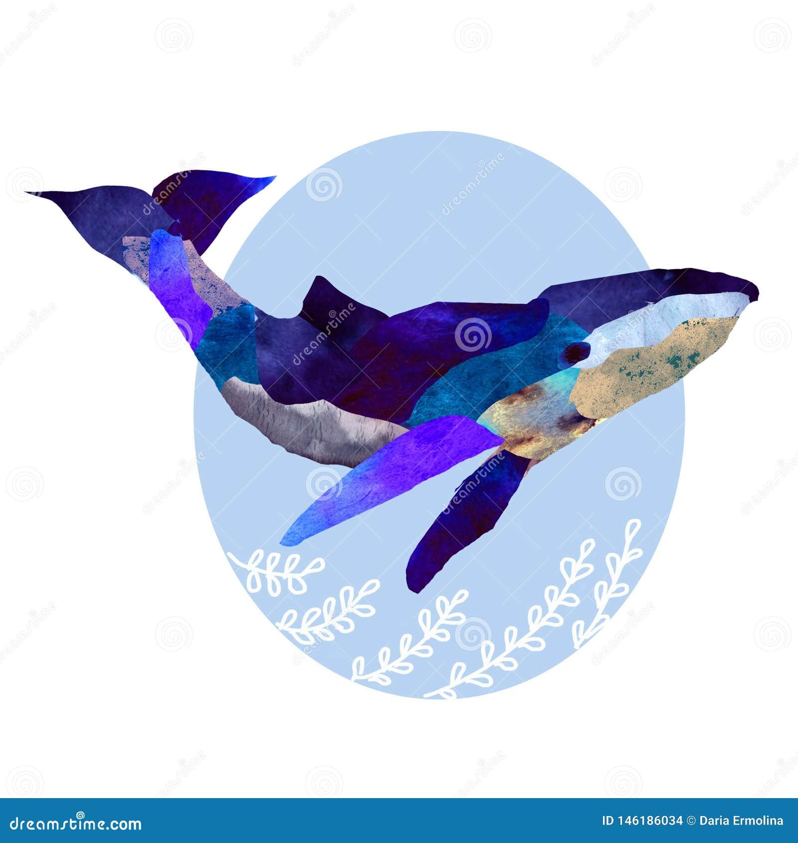 Иллюстрация синего кита