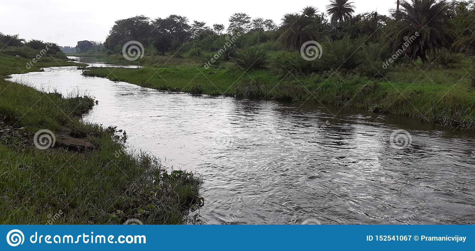 Индийские небольшие река и лес