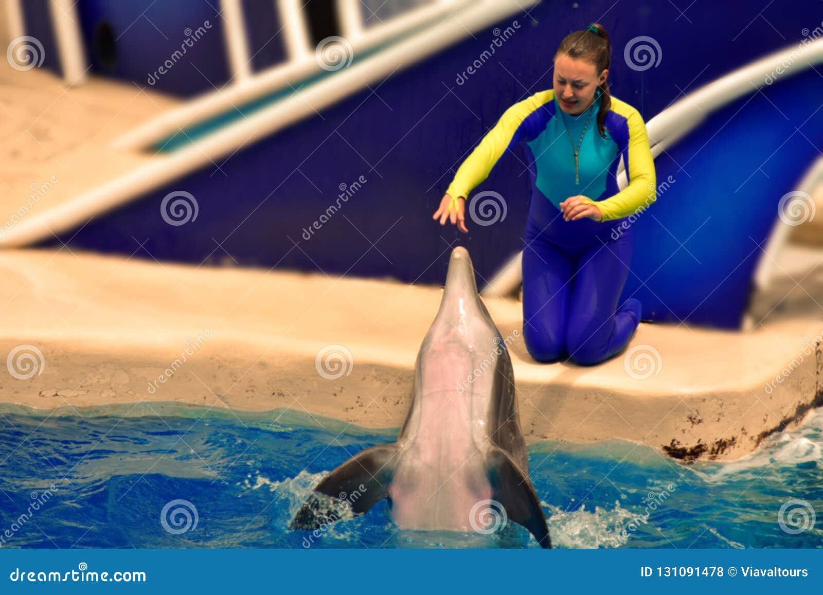 Инструктор девушки взаимодействующий со славным дельфином в мире моря