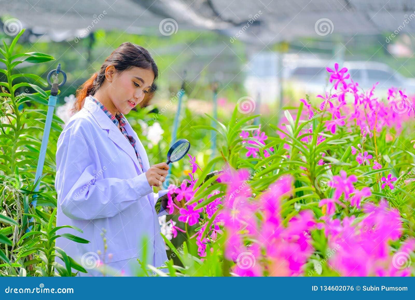 Исследователи орхидеи женщин исследующ и документирующ характеристики орхидей в саде