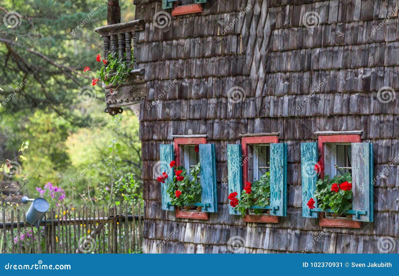 Историческое окно сельского дома с красными гераниумами