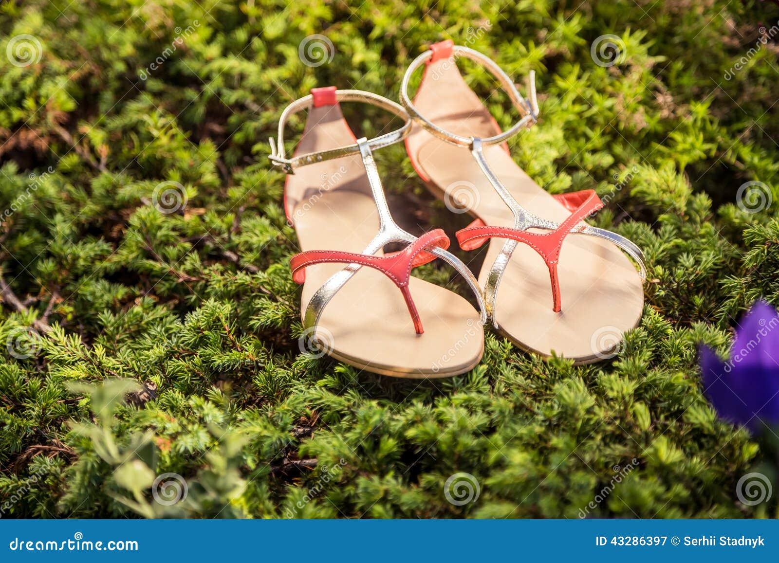 7ef313d5f Итальянские ботинки, стильные сандалии лежат на траве Стоковое ...