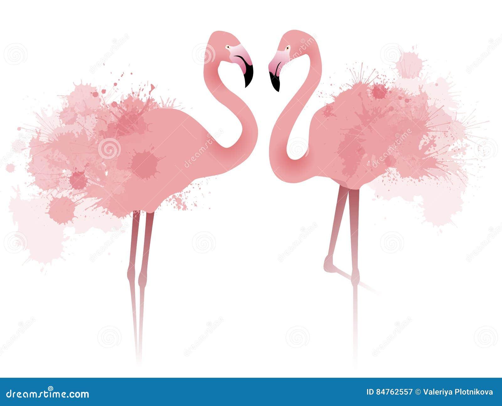 Иллюстрация вектора фламинго пинка пар