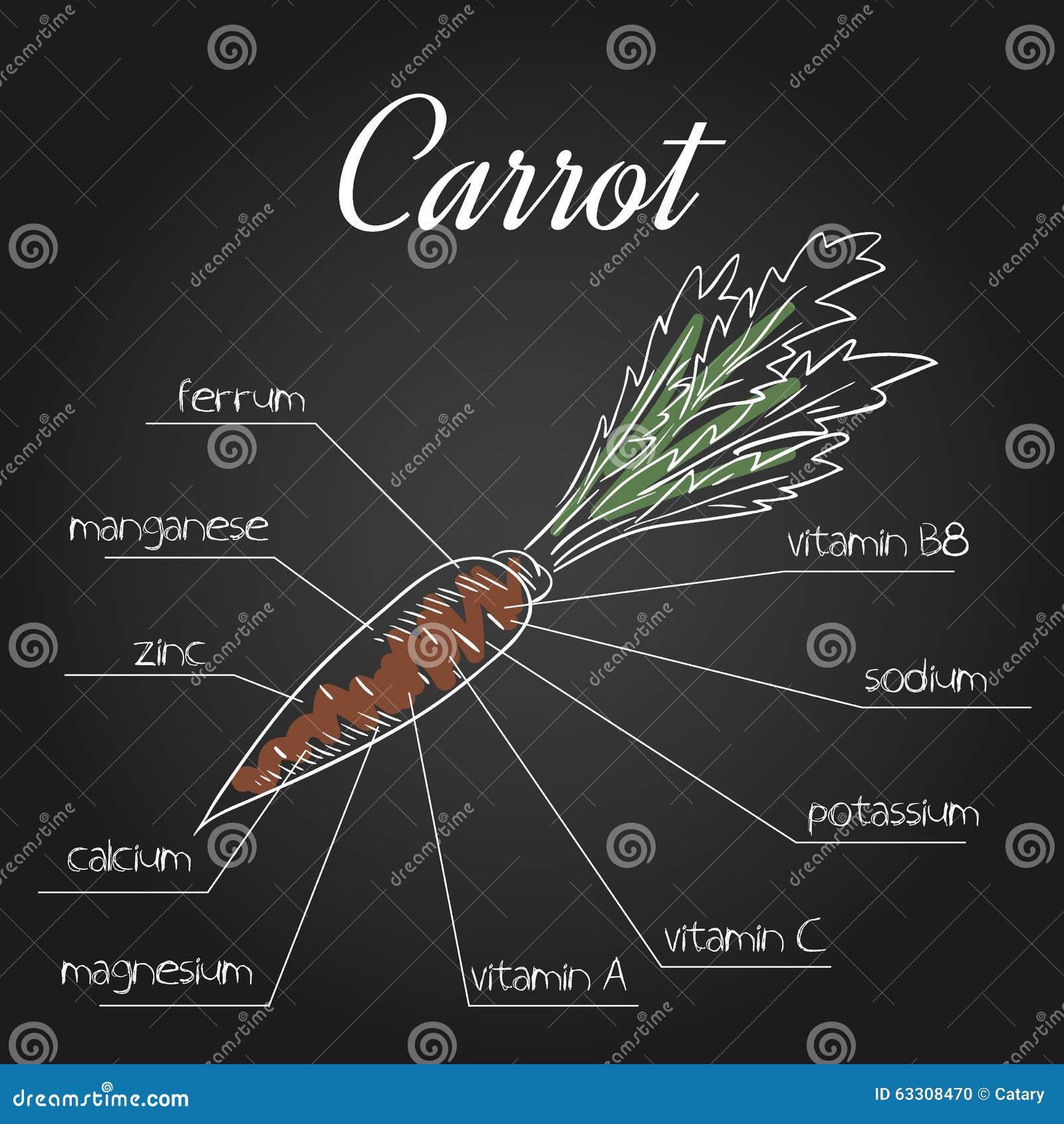 Иллюстрация вектора nutrient списка для моркови