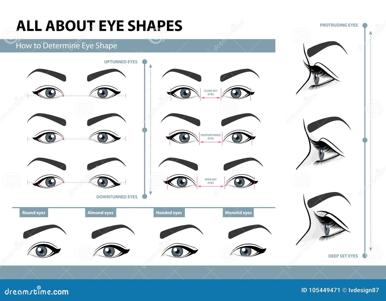 Как определить форму глаза Различные типы женских глаз Комплект иллюстраций вектора с титрами Шаблон для состава