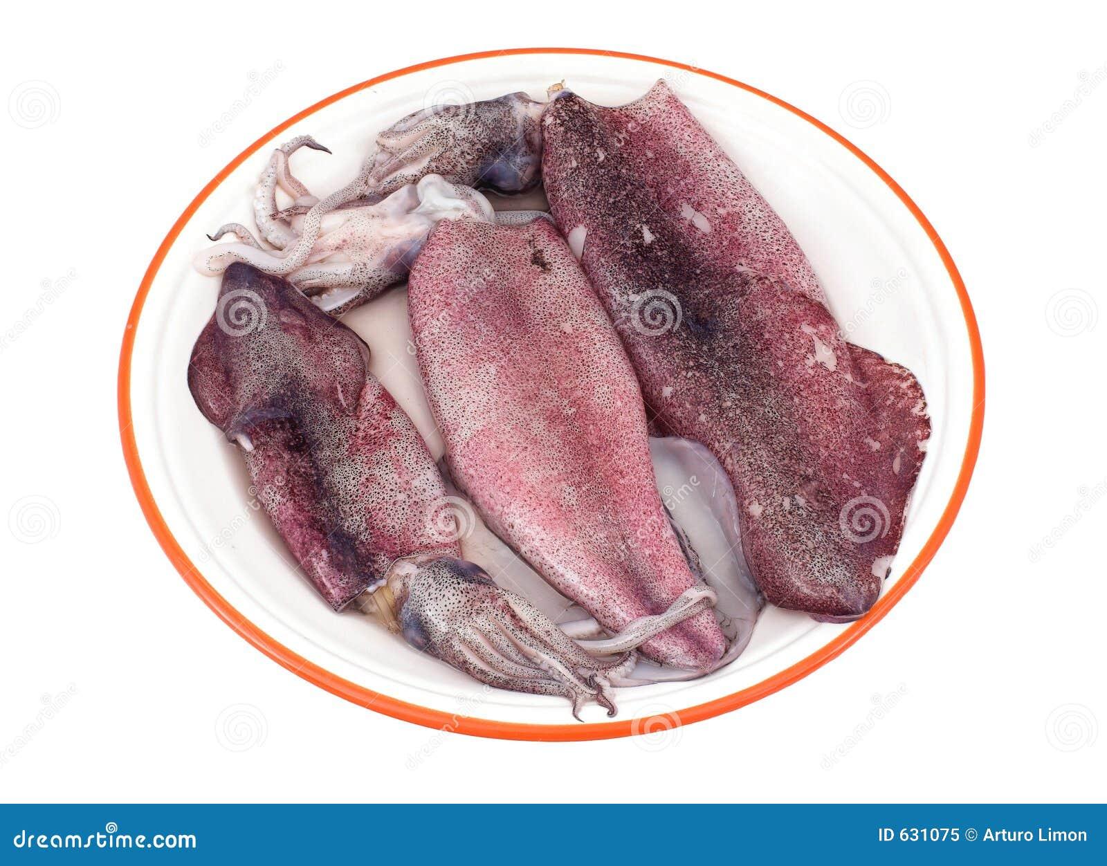Download кальмары стоковое изображение. изображение насчитывающей здорово - 631075