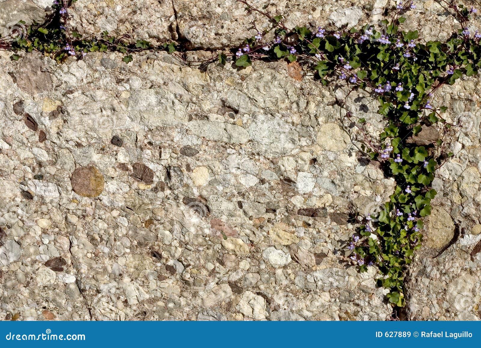 Download каменная текстура стоковое изображение. изображение насчитывающей минерал - 627889