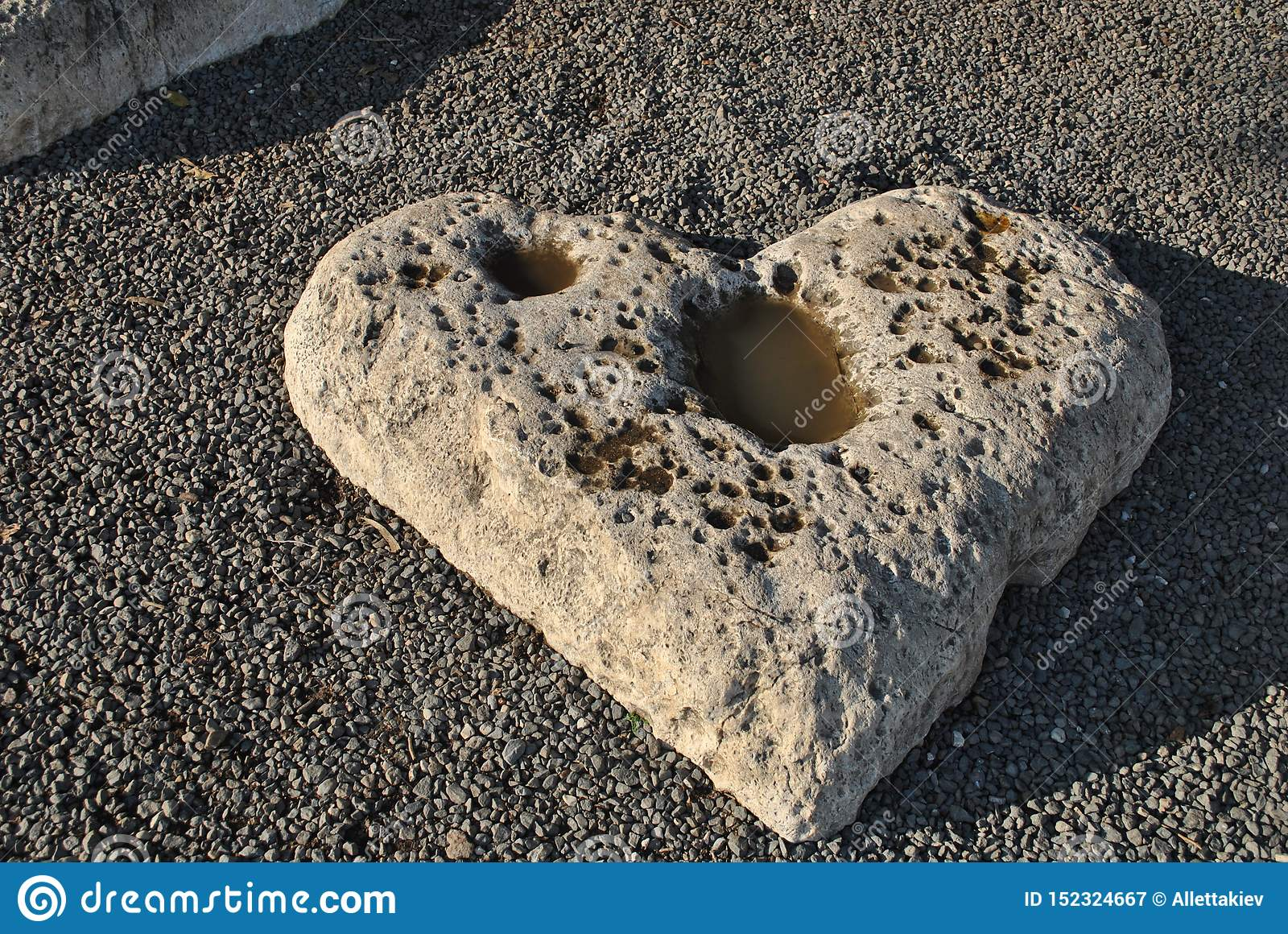 Камень на морском побережье