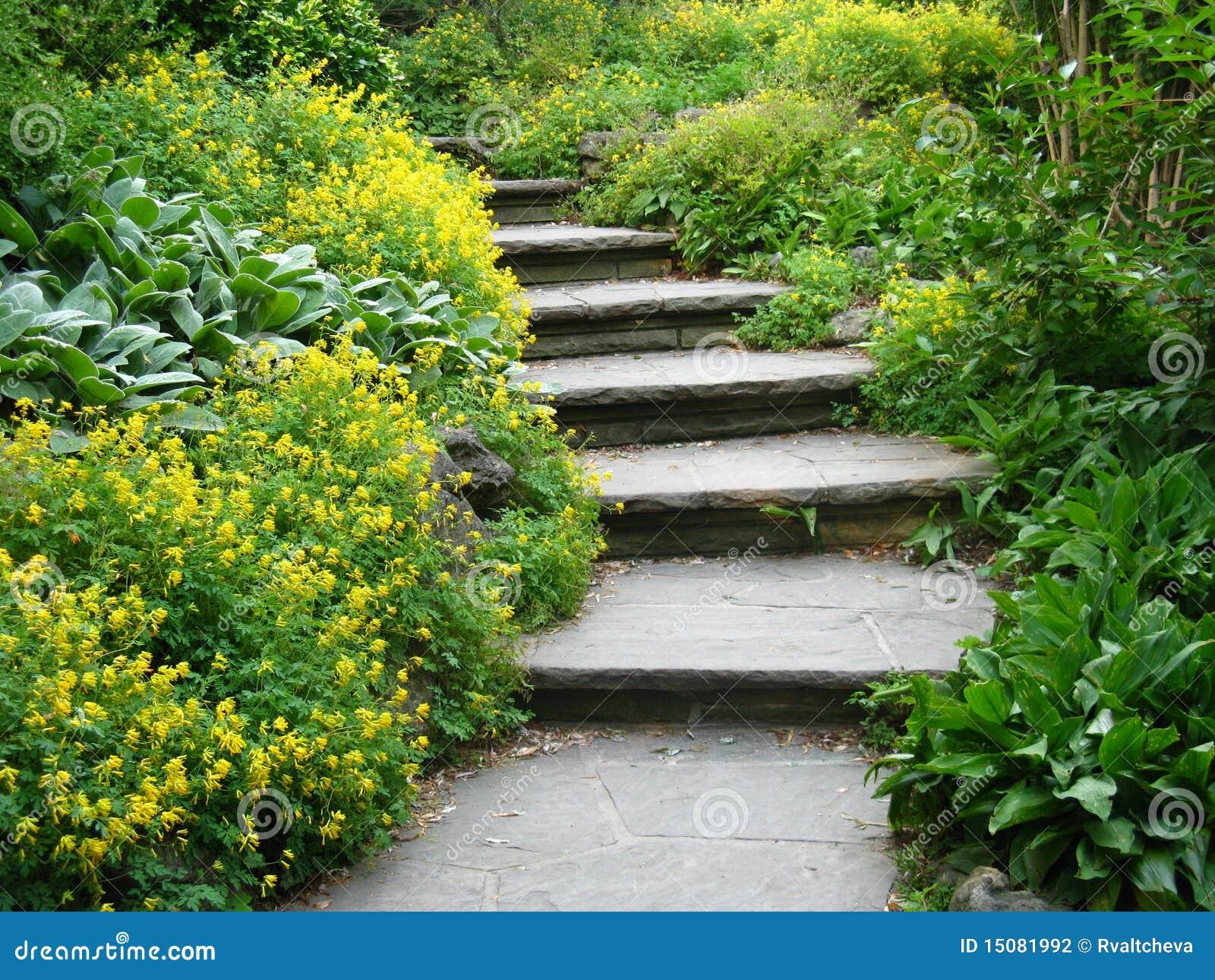 камень шагов