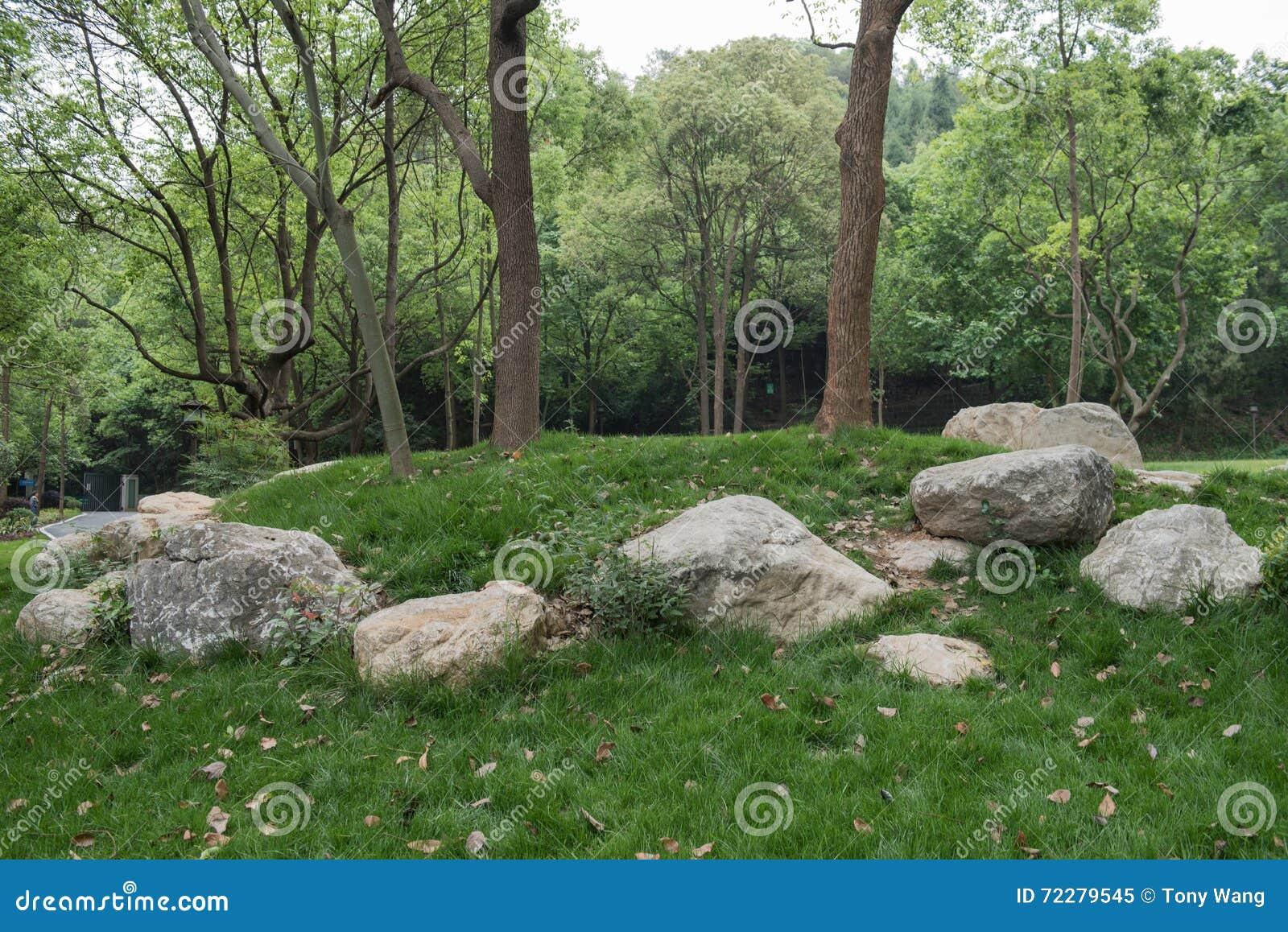 Download Камни на траве стоковое изображение. изображение насчитывающей сфотографировано - 72279545