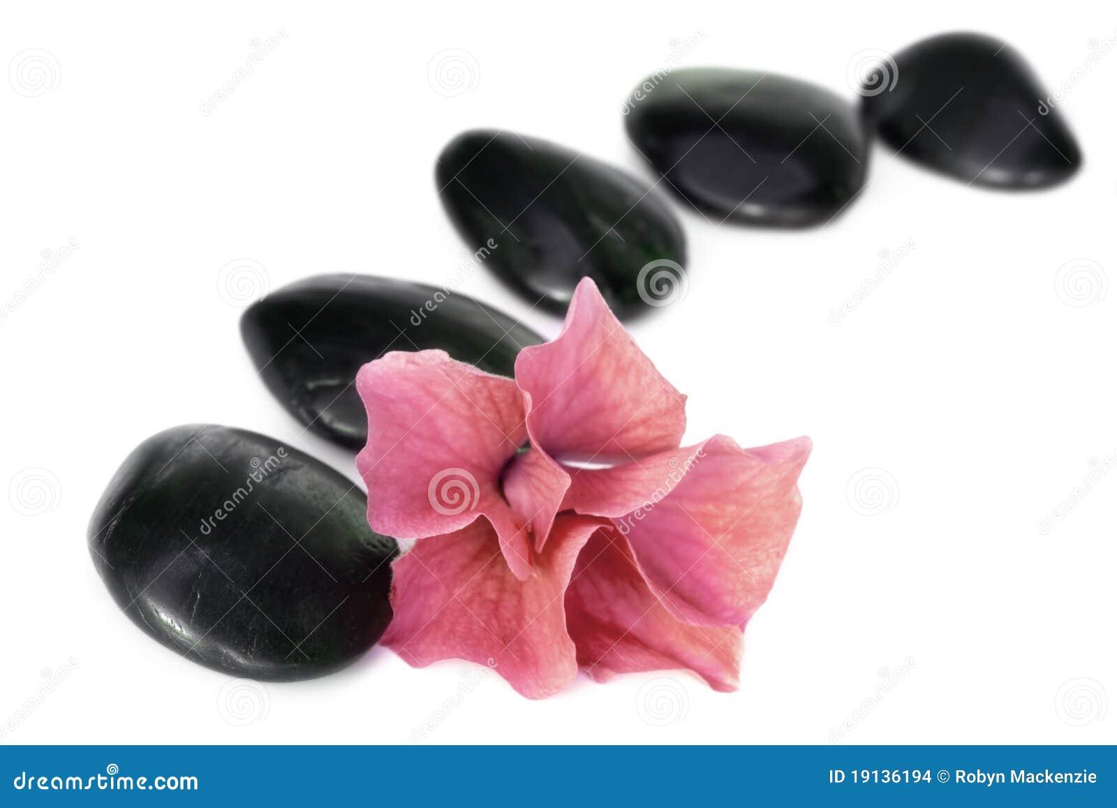 камни спы цветка