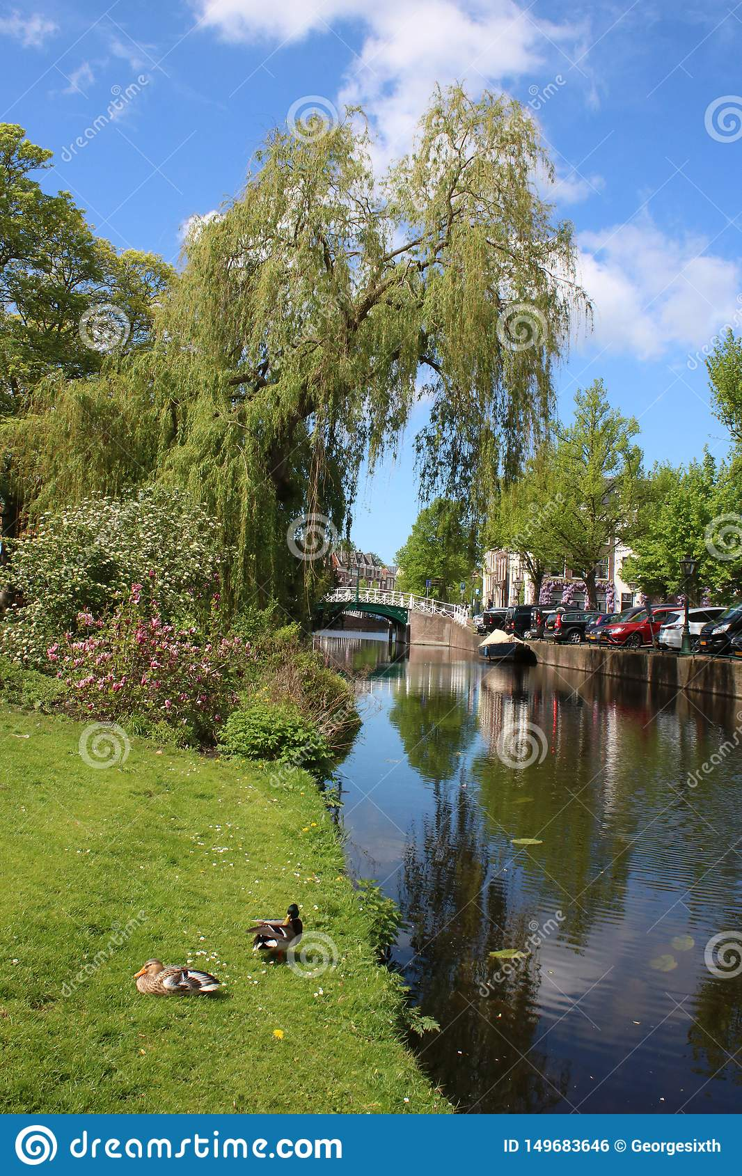 Канал, canalbank вне Hortus Botanicus, Лейдена