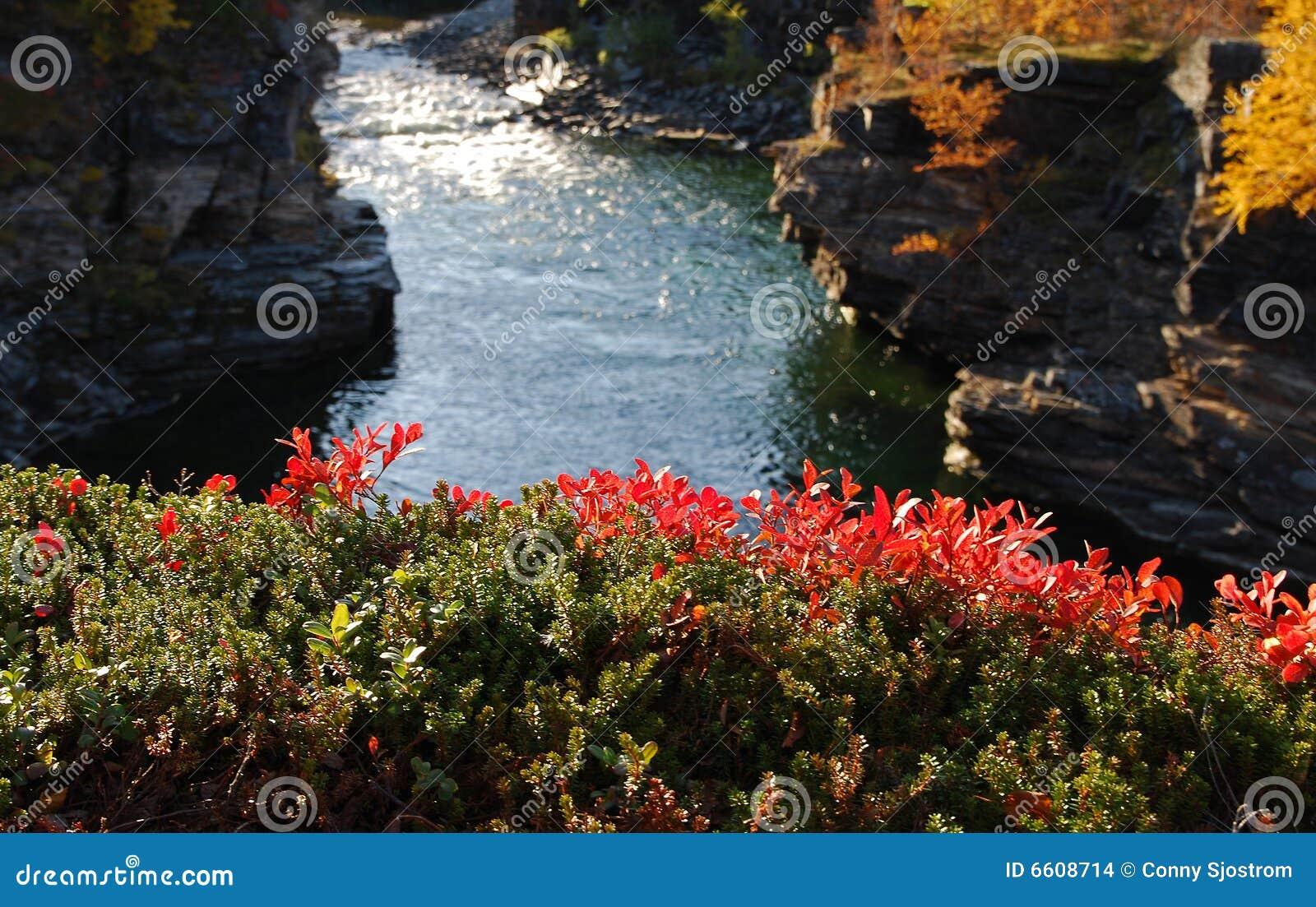 каньон abisko