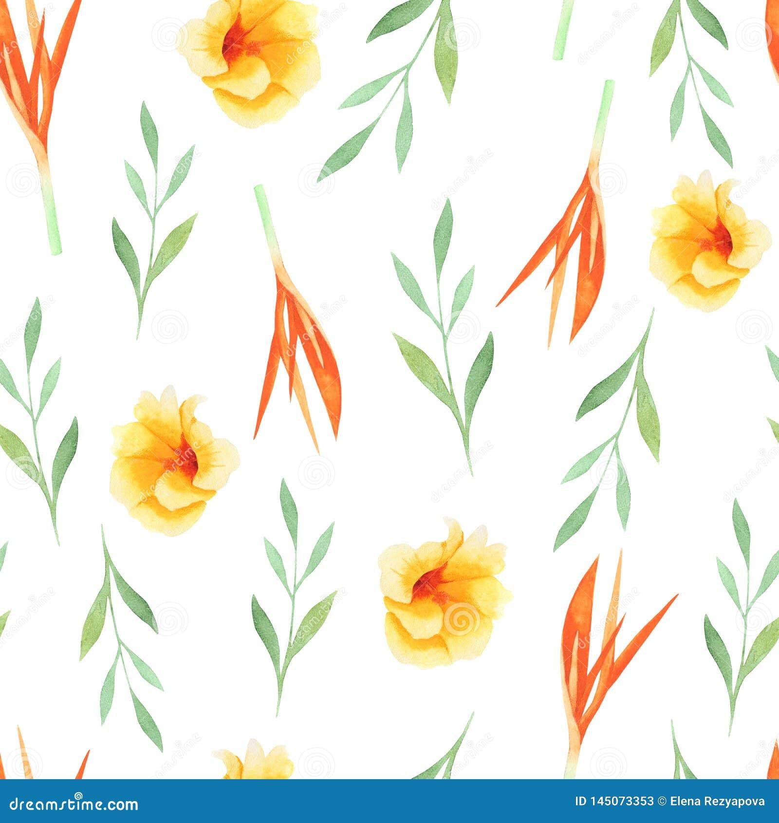 Картина акварели тропическая лист и цветков, безшовной картины на белой предпосылке