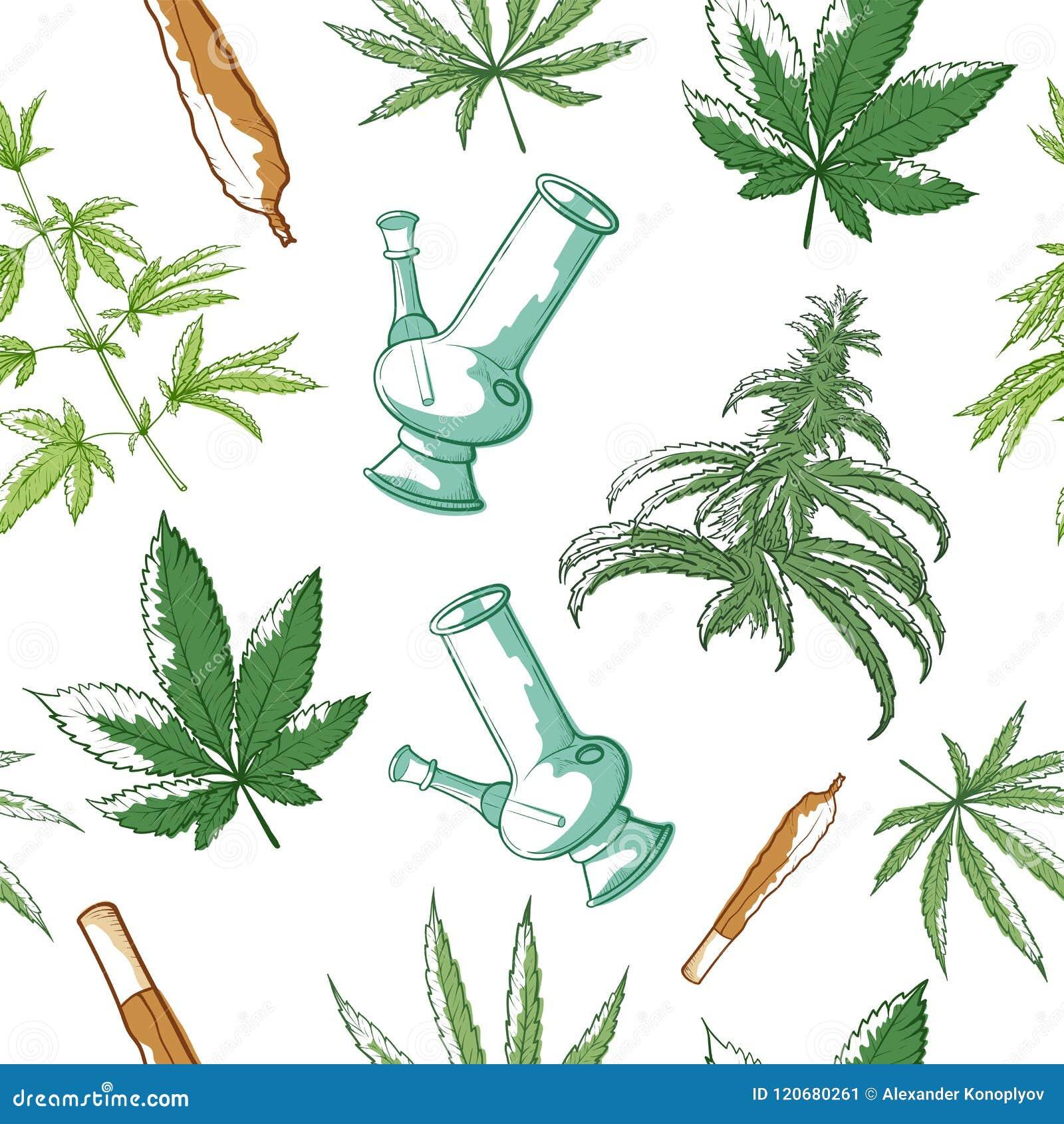 Марихуана картина медицинский сорт марихуаны