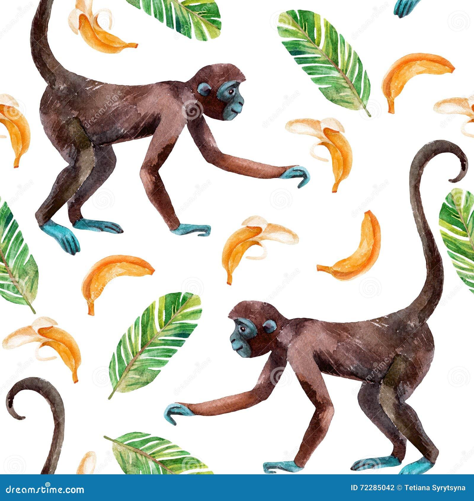 Download Картина обезьяны безшовная иллюстрация штока. иллюстрации насчитывающей американская - 72285042