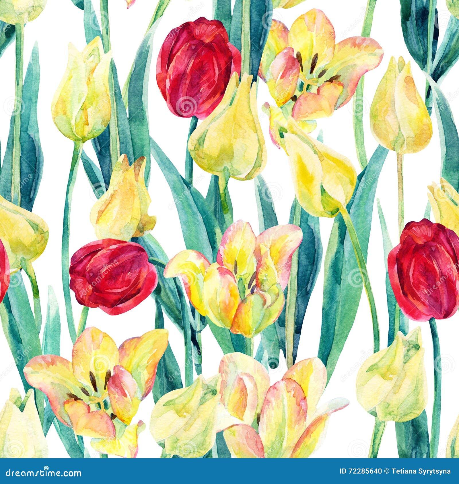 Download Картина поля тюльпанов весны акварели безшовная Иллюстрация штока - иллюстрации насчитывающей земля, backhoe: 72285640