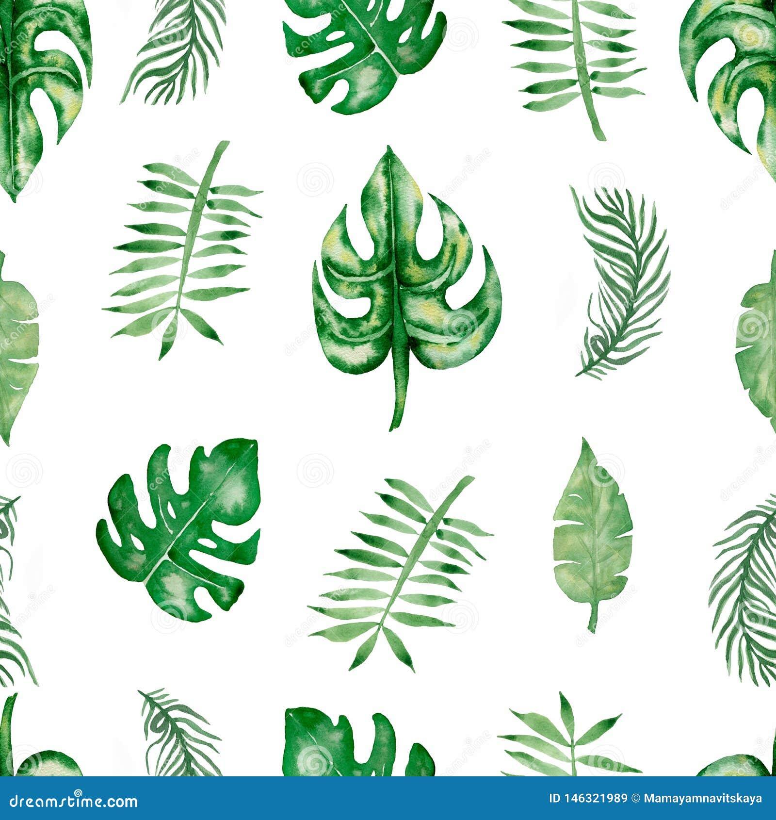 Картина тропических листьев акварели безшовная Лист руки вычерченные красивые красочные троповые