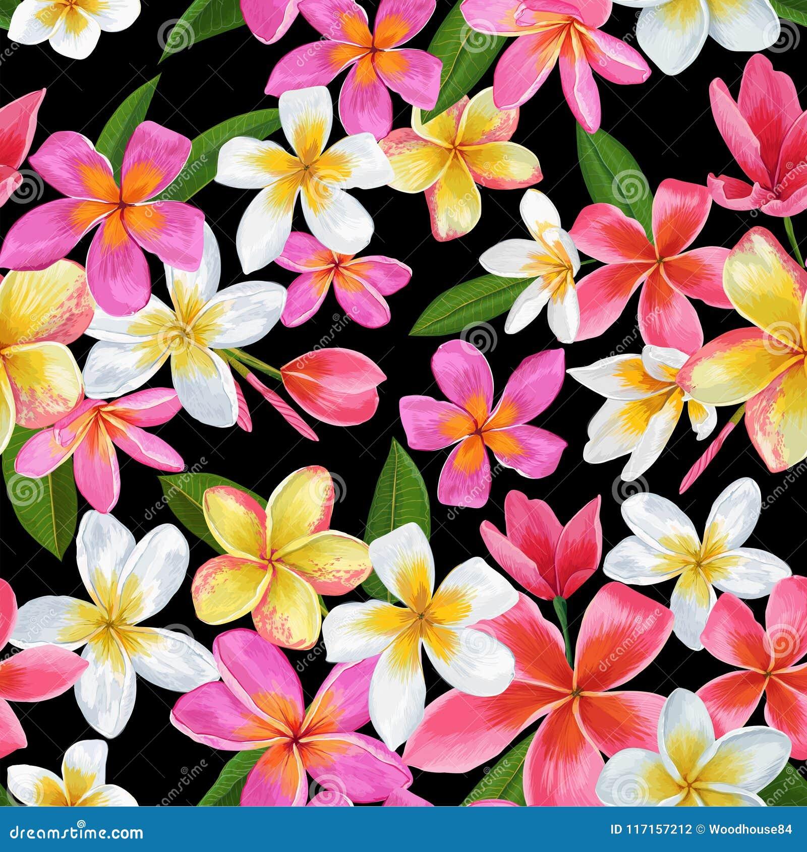 Картина тропических цветков акварели безшовная Флористической предпосылка нарисованная рукой Экзотический дизайн цветков Plumeria