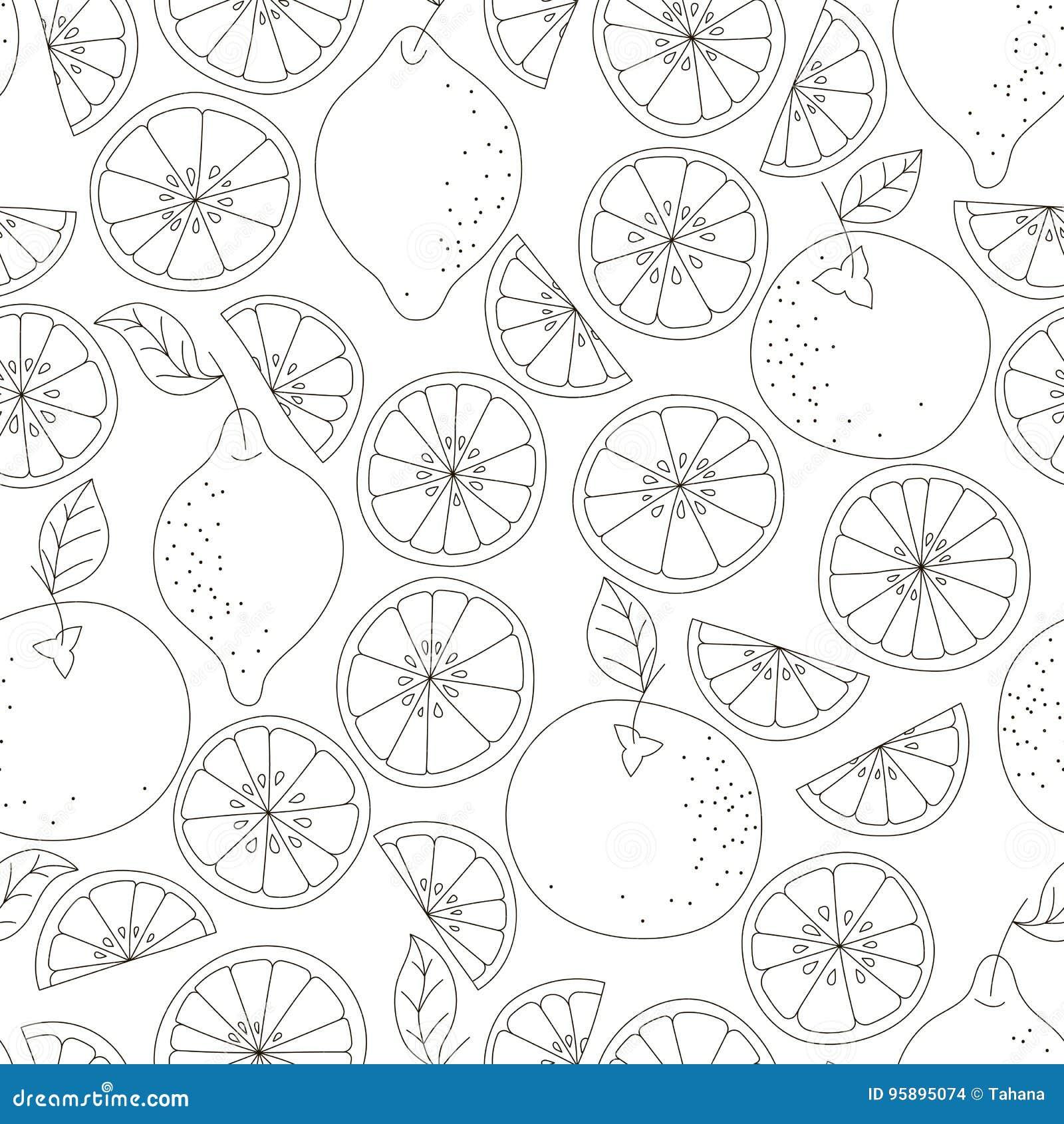 картина цитруса безшовная Предпосылка вектора плодоовощ Черно-белая предпосылка с лимоном и апельсином Естественный и здоровый